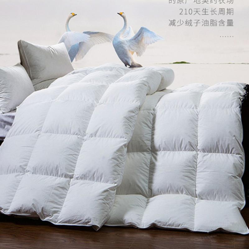 HangKey梦巴黎羽绒被(HK1809)200*230cm